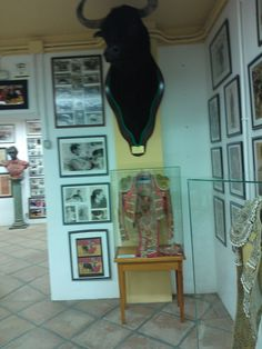 there is a museum in the arena