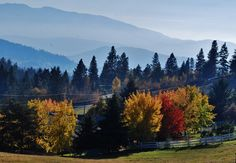 Great fall shot taken from Silver Star Road, Vernon BC Vernon Bc, Great Falls, Fall Photos, Silver Stars, Happy Fall, Staycation, British Columbia, Tourism, Babe