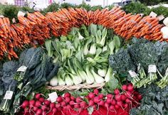 10 EASIEST VEGETABLES FOR BEGINNERS. Fall garden radishes, carrots, lettuces, kale and spinach.
