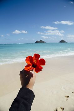 Lanikai Beach, Hawaii...