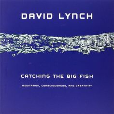 "David Lynch, ""Catching the Big Fish"" - an entryway to meditation and the Unified Field, from which bliss derives, interconnections are made, and creativity thrives. At least I think that's what it was about."