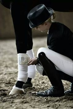 Classical black and white for dressage- beautiful :)
