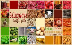 Boross Veronika munkája - Galagonya Helyi piac gyakorlat 1. kör - mooboard ------------------------------------- Tervezz Te is ilyeneket! http://www.webdesigntanfolyam.com