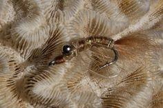 Fly Paper: My Top 5 Bonefish Flies