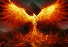 Phoenix- Love the fire bird! :)