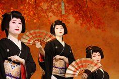"Geiko Sisters Kikuno, Kikuyuu and Kikutsuru performing in the last act of Mizuekai, the autumn dances of Miyagawacho hanamachi, called ""Miyagawa Kouta.""- MiyagawaKouta2011 | Flickr - Photo Sharing!"