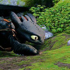 How to Train Your Dragon DreamWorks Animation http://briannathestrange.tumblr.com/post/134001726712