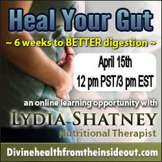 Heal Your Gut 6 week online class. GAPS compatible.