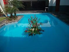 Arreglos para la piscina de Florería Flordelis | Foto 5
