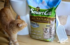 Feeling Really Smart with SmartCat Litter - GIVEAWAY!