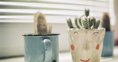 slow living // hygge // cozy // home decor ideas // whimsical // cactus Kitchen Sink Interior, White Kitchen Sink, Feng Shui, Carpet Padding, Best Carpet, Home Decor Pictures, Knobs And Handles, Next At Home, Green Building