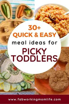 Need quick and easy toddler recipes and toddler meals for picky eaters? This roundup contains healthy toddler meal ideas as well as finger foods for toddlers and 1 year old meal ideas. Toddler Finger Foods, Healthy Toddler Meals, Toddler Recipes, Baby Food Recipes, Kids Meals, Healthy Recipes, Toddler Dinners, Baby Finger, Toddler Food