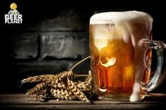 Km de Vantagens Microbrewery Equipment, How To Make Guacamole, Alcohol, Brew Pub, Beer Bar, Rum Beer, Cool Bars, Beer Lovers, Ghost Rider