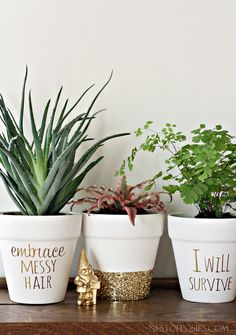 DIY gold foil lettered pots (with very clever sayings) i love this for my IKEA pots and home depot plants xx