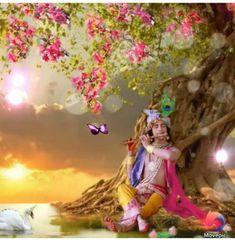 Radha Krishna Songs, Radha Krishna Love Quotes, Cute Krishna, Radha Krishna Pictures, Krishna Photos, Krishna Art, Indian Art Paintings, Canvas Paintings, Radhe Krishna Wallpapers