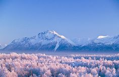 Chugach mountains from Wasilla, Alaska by akfoto