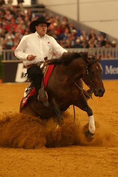 Reining!! American Quarter Horse, Quarter Horses, Most Beautiful Animals, Beautiful Horses, Horse Showing, Cutting Horses, Horse And Human, Reining Horses, Western Riding