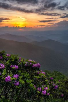 Pigeon Forge cabin rentals and Gatlinburg cabin rentals for the Smoky Mountains of Tennessee. Privately owned vacation cabins in Pigeon Forge and Gatlinburg. Downtown Gatlinburg Hotels, Gatlinburg Cabin Rentals, Smoky Mountains Map, Blue Ridge Mountains, Nc Mountains, Mountain Pictures, Smoky Mountain National Park, Beautiful Places, Beautiful Sunset