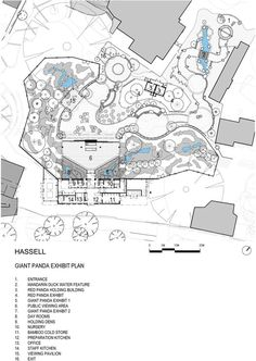 Adelaide Zoo Giant Panda Forest,Plan