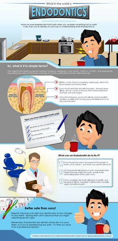 What in the world is #Endodontics? Call us to know more: 818-552-3636 Image Credit: visual.ly
