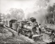 Train Route from Jupiter to Lake Worth, Florida Black and White Photograph Print, Historical Wall Art for Home Decor Train Route, By Train, Train Tracks, Train Art, Old Florida, Vintage Florida, West Florida, Central Florida, Shorpy Historical Photos