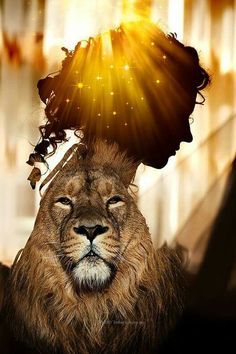 Lion of Judah with Bride of Christ bowing her head in reverence. Lion Pictures, Jesus Pictures, Christian Warrior, Christian Art, Daughters Of The King, Daughter Of God, Braut Christi, Lion Of Judah Jesus, Lion Love