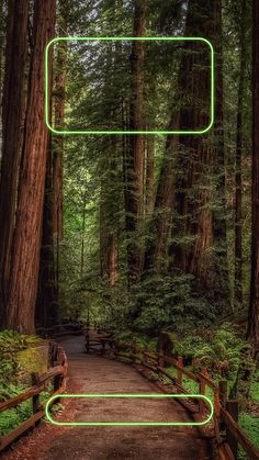↑↑TAP AND GET THE FREE APP! Lockscreens Art Creative Nature Forest Green Path Trees HD iPhone 6 Plus Lock Screen