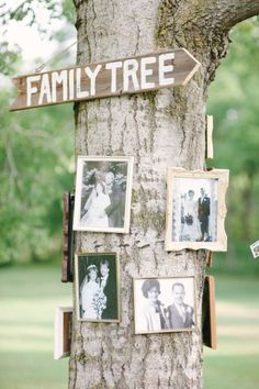 Family tree! Photos of grandparents, parents, siblings in vintage frames wrapped around a tree.