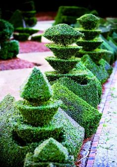 11) Pearl Fryar Topiary Gardens:  Three acres of visual delight.