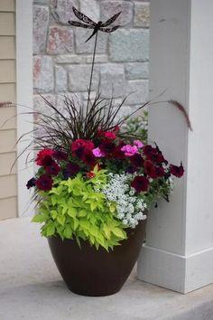 30 Container Gardening Ideas Beyond Summer Flowers Outdoor Flowers, Outdoor Planters, Diy Planters, Garden Planters, Planter Ideas, Front Yard Planters, Full Sun Planters, Planters For Shade, Porch Planter