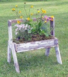 old tool box flower planter
