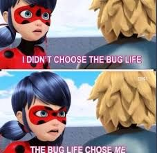 Image result for miraculous ladybug memes