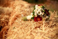 Wedding and Event planner in Toscana e Umbria - Mariella Santoni Country Chic, Tuscany, Wedding Planner, Flower, Wedding Planer, Country Fashion, Wedding Planners, Tuscany Italy, Flowers