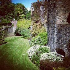#garden and #wall of #walmercastle #walmer #castle in #dover #kent #england #britain #uk