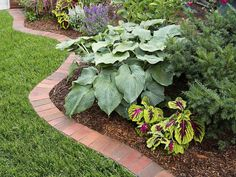 Use clay pavers to form a tidy border to separate your lawn from plantings. Brick Garden Edging, Garden Pavers, Lawn Edging, Garden Borders, Raised Garden Beds, Small Gardens, Outdoor Gardens, Clay Pavers, Brick Pavers
