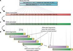 WordPress blog post I wrote about DNA data storage