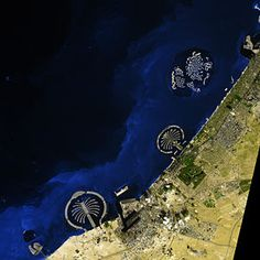 Wyspy Palmowe – Wikipedia, wolna encyklopedia
