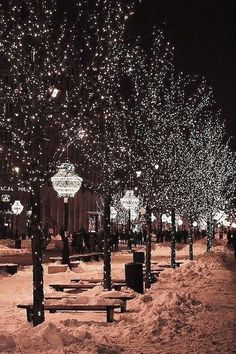 . #snow #lights #winter #cold #FF #outdoor #photooftheday