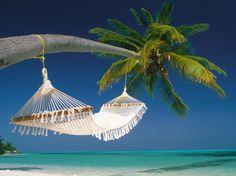 white-hammock