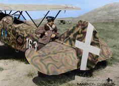 Fiat CR.32 of the 163rd Autonomous Land Fighters Squadron, Gadurrà, Rhodos Greece, 1940.