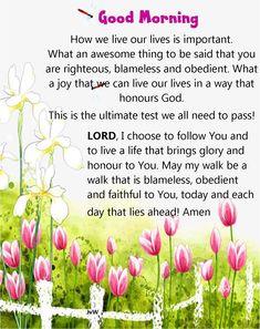 Good Morning Prayer, Morning Blessings, Good Morning Messages, Good Morning Greetings, Morning Prayers, Good Morning Good Night, Good Morning Images, Good Morning Inspirational Quotes, Good Morning Quotes