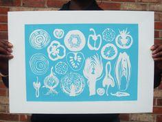 Fruit n veg box botanical illustration inspired by lulukitololo, $45.00