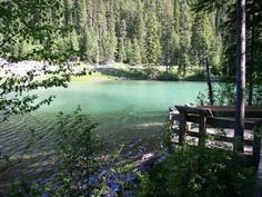 Attractions in Kootenay National Park - Radium Hot Springs Mineral Pools, Marble Canyon and more!
