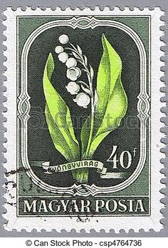 Postage stamp - HUNGARY - Circa 1951 - Lily of the valley