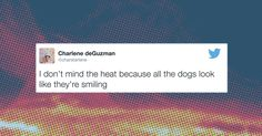 These tweets are so HOT HOT HOT it's actually kind of exhausting!