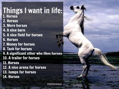My wishlist - common denominator = horse  Please respect the post, share but don't alter.