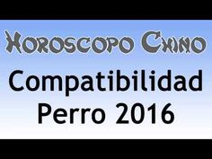 Compatibilidad Perro 2016 Horoscopo Chino - Tarot del Amor