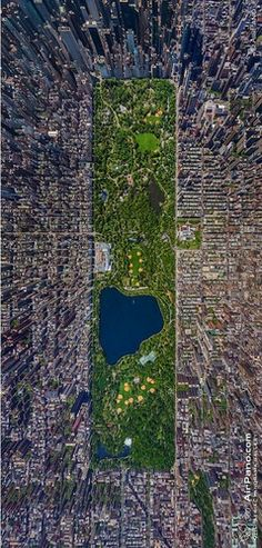 Manhattan, Central Park Amazing!