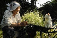 花のように of Miyoko IHARA WATANUKI WEBSITE