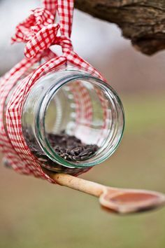Easy DIY bird feeder from items in your own kitchen! Use an old mason jar or reuse a jar from the refrigerator, tie a ribbon around the center and stick a ...
